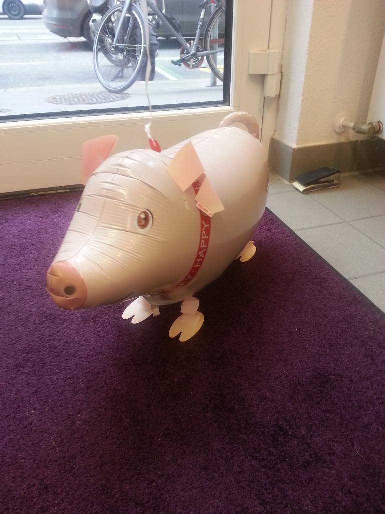Airwalker Schweinchen