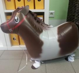 Airwalker Pony braun weiß