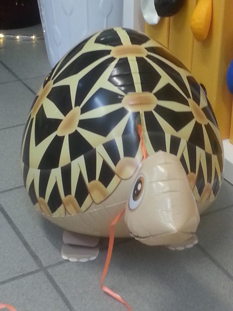 Airwalker Schildkröte