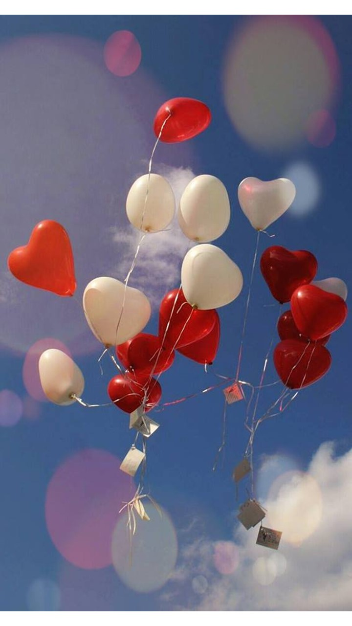 Herzluftballons weiß und rot mit Flugkarten