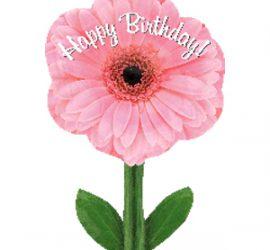 Geburtstagsblume - rosafarbener Folienballon in Form einer Blume mit Happy Birthday Aufschrift