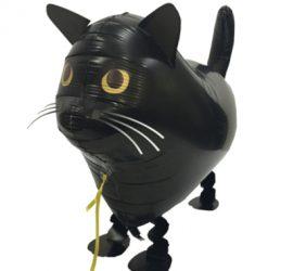 schwarze Katze als Airwalker